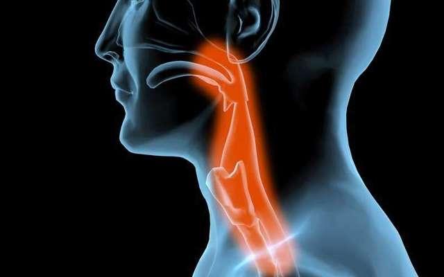 Ожог горла: чем лечить в домашних условиях