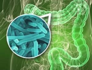Чистка печени в домашних условиях от токсинов, алкоголя