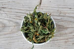 Череда: полезные свойства и противопоказания, отвар травы для купания, для кожи, при дерматите