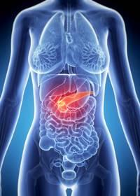 Заболевания поджелудочной железы: симптомы, признаки, диагностика