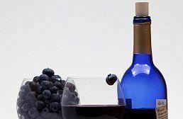 Витамин d – защита от бронхиальной астмы
