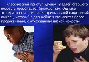 Бронхоспазм: симптомы и причины у взрослых и детей, как снять бронхоспазм