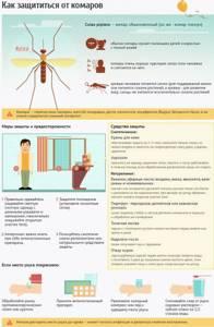 Укусы насекомых: защита от комаров, первая помощь при укусе пчел, осы, мошки