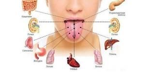 Белый налет на языке - причины, заболевания, лечение