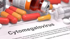 Цитомегаловирус укрепляет иммунитет