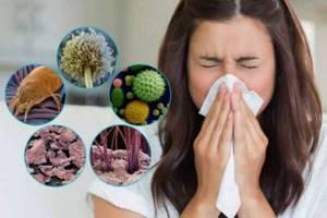 Аллергия на пыль: симптомы, что делать, лечение, причины, профилактика
