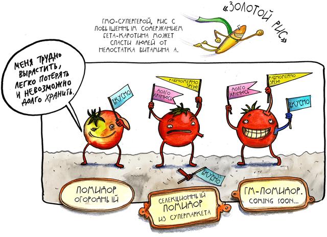 ГМО вред или польза, расшифровка, список продуктов, содержащих генетически модифицированные организмы