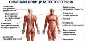 Тестостерон: норма у мужчин и женщин, причины повышенного и пониженного уровня, симптомы