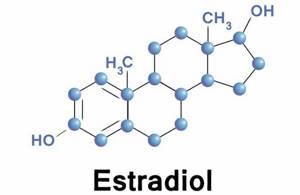 Эстрадиол норма у женщин, причины повышенног или пониженного уровня гормона