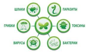 9 мошеннических способов очистки организма