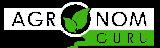 Багульник: лечебные свойства и противопоказания травы багульника